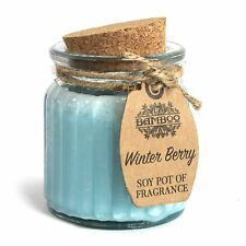 Soy Pot of Fragrance Glass Jar Candle 14 Fragrances to Choose UK SELLER 1 Winter Berry