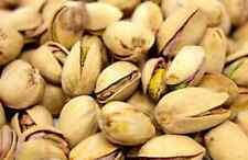 Pistachios Roasted Salted In Shell 1lb Grade A USA SELLER