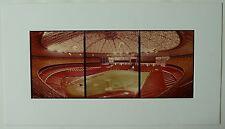 Houston Astros, Astrodome Baseball Stadium Panoramic Color Photos