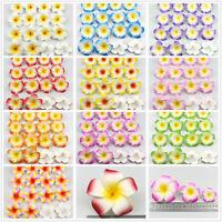 100Pcs Bulk 6cm Foam Hawaiian Frangipani Plumeria Artificial Flower Heads Craft