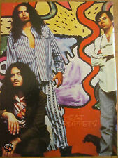 The Meat Puppets, Full Page Vintage Pinup