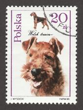 Welsh Terrier *Int'l Dog Postage Stamp Art Collection *Unique Gift*