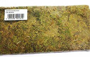 Swell Reptiles Terrarium Moss Natural for Vivariums/ Terrariums