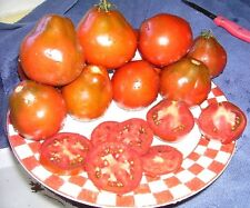 100 RED PEAR TOMATO Lycopersicon Heirloom Indeterminate Fruit Vegetable Seeds