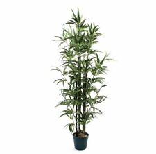 """AJ, 5 più vicino 2 NATURA Artificiale 3 FT (ca. 0.91 m) 6"""" FONTANA Bamboo Tree Casa Ufficio"""