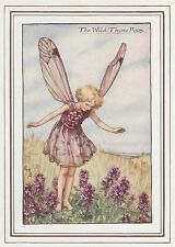 CICELY MARY BARKER c1930 THE WILD THYME FAIRY Painting Vintage Art Book Print