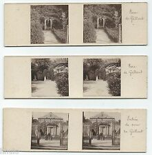 STC464 stereoview photo STEREO Vintage Lot de 3 amateur Algérie parc de galland