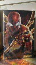 HOTTOYS  MMS482 Iron Spider Marvel Avengers Infinity War IRONMAN 1/6 Figure