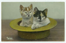 c 1910 Straw Boater Hat Cat Twins photo postcard