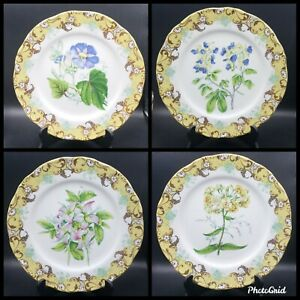 """Andrea by Sadek English Garden 10.75"""" Dinner Plates Set of 4 Japanese Dinnerware"""