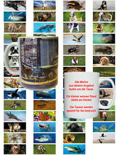 10.1oz Ceramic Mug with Motif : Animals/ Animals/ Fauna/Coffee Mug Cup