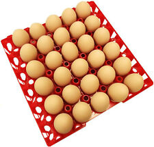 24 RITE FARM PRODUCTS 30 EGG PLASTIC CHICKEN TRAYS SHIPPING CARTON POULTRY FLAT