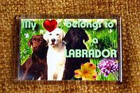Labrador Retriever Fridge Magnet 77x51mm Birthday Gift Xmas Mothers Day Gift
