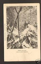 BOIS-LE-PRETRE (54) AVION ALLEMAND abattu 1914-15