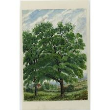 J Morgan Traditional Summer Beech Landscape Bristol c1810 Watercolour Painting
