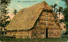 Vintage Postcard Tobacco Barn Cuba Caribbean