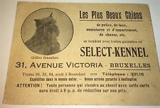 Rare Antique French / Belgium Dog Breeding Kennel Advertising Trade Card! C.1900