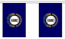 KENTUCKY U.S. STATE BUNTING 9 metres 30 flags Polyester flag