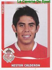 333 NESTOR CALDERON MEXICO DEPORTIVO TOLUCA.FC PRIMERA DIVISION 2010 PANINI