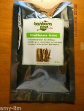 Tantora Banana Leaves (10 pieces) - High Fiber Natural Food for Dwarf Shrimps