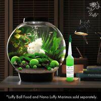 Luffy Marimo Moss Balls 4pcs: Aquatic Plant for Bettas, Shrimp, Fish, Water Tank