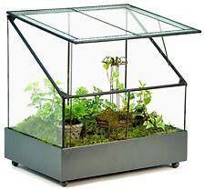 WAR153 H Potter Large Glass Plant Container Terrarium Planter Fairy Garden Gift