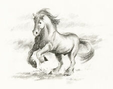 SHIRE HORSE Original Pencil Drawing by Artist DJ Rogers