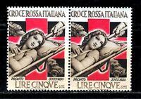 Erinnofila - Croce Rossa Italiana