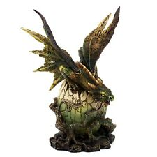 """Green Dragon Hatching From Vine Covered Egg Figurine 8"""" High Resin Statue New"""