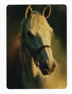 Beautiful White Horse in a Bridle  -- Modern Wide Linen Swap Playing Card