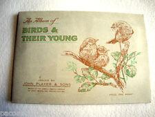 1935 VECCHIO RARO ALBUM DI FIGURINE UCCELLI E I LORO CUCCIOLI BIRDS THEIR YOUNG.