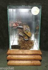 Handcrafted Butterfly Music Box The Entertainer Cedar Glen Products Made in USA