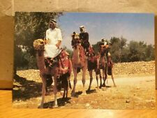Egypt Three Travellers On Camels 1995 Postcard