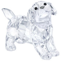 Swarovski Crystal Creation 5400141 Labrador Puppy,Standing RRP $99