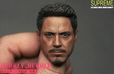 "1/6 Tony Stark Iron Man Head Sculpt For 12"" PHICEN Hot Toys Male SHIP FROM USA"