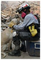 World Trade Center 9/11 Rescue Dog And Worker Silver Halide Photo