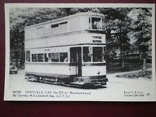 Bus/ Tram