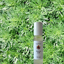 ROLLON Davana natura puro äth. OLIO 0,5% in olio di jojoba 10ml parfumöl-Top 2 base