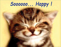 Tabby Kitten Fridge Magnet, Soooooo... Happy!