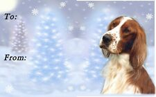 Irish Red & White Setter Christmas Labels by Starprint