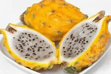 25+ Usa Grown Fresh Yellow Dragon Fruit Seeds Non Gmo