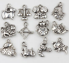 12X Exquisite Tibetan Silver Constellation Mixed Pendant Charm Jewelry Findings