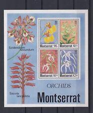 TIMBRE STAMP BIG BLOC ILE MONTSERRAT Y&T#28 FLEUR ORCHIDEE NEUF**/MNH-MINT ~A91