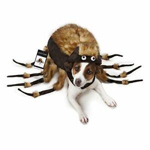 "Zack & Zoey Fuzzy Tarantula Costume for Dogs, 8"" X-Small"