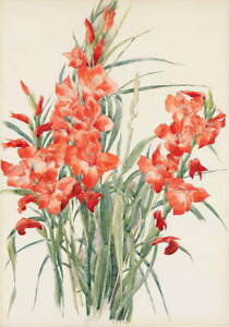 Charles Demuth Red Gladioli Poster Reproduction Paintings Giclee Canvas Print