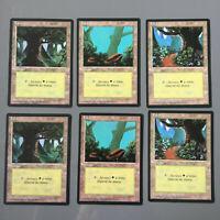 Lot 6 terrains forêt 3e FR BN fbb - Magic The Gathering MTG carte card - lands
