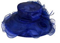 Forbusite Hat Blue Chiffon Bow Netting Kentucky Derby Hat Church Wedding Sheer