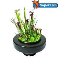 Floating Plant Basket Garden Water Feature Fish Pond Plants Superfish 23cm