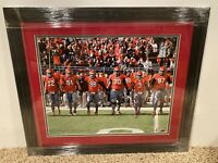 2010 Ohio State Buckeyes Senior Captains signed 16x20 FRAMED photo vs. UM OSU