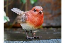 Robin Red Breast Bird Resin Garden Ornament Lawn Statue Sculpture Patio Decor